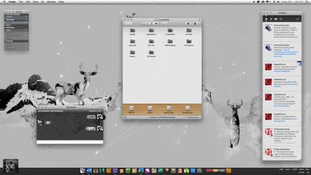 Lp by neodesktop