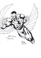 The Falcon by CaptainSnikt