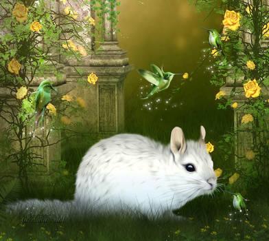 My sweet little Chinchilla by JassysART
