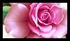 I love Flowers by JassysART