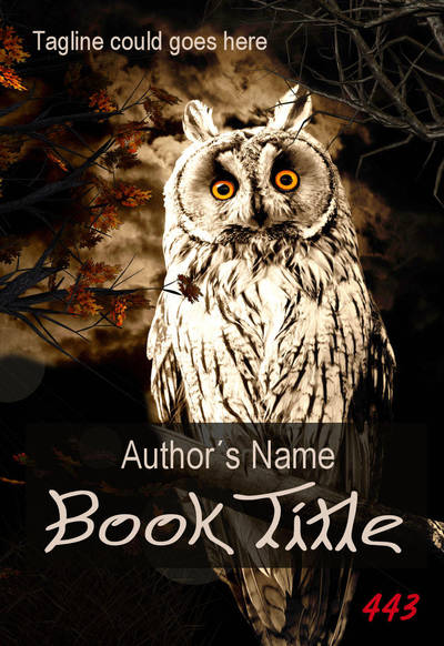 Premade eBook Cover 443 - Owl by Night by JassysART