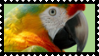 Parrot stamp by JassysART