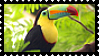 Tucan Stamp by JassysART