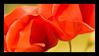 Poppies Stamp 002 by JassysART