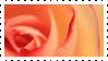 F2u Decor Stamp Rose Pink 031 by JassysART