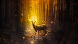 Fantasy Deer On Fire - Wallpaper by JassysART