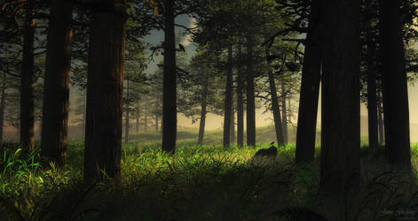 Forest through the trees by MerlinsArtwork