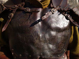 Leather armour by glee72