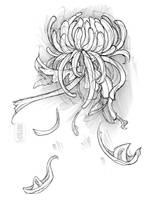 24hr sketch 263: extra by fydbac