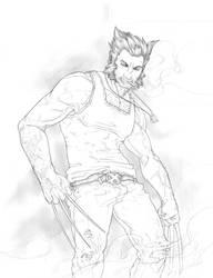 Wolverine 02 by fydbac