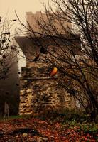 bastion in fog by pauljavor