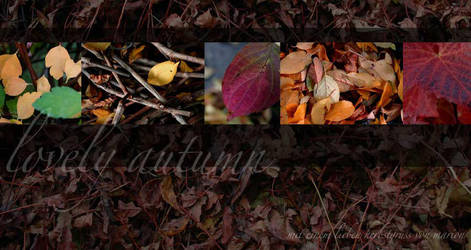 .:.lovely.autumn.:. by nebelelfe