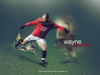 Wayne Rooney by Mish-A-Man