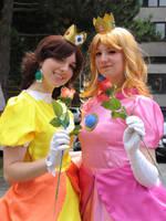 Peach and Daisy - In the Sun by Rayi-kun