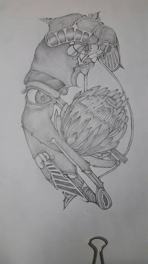 protea. by shaazah13