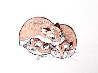 Roborovski Hamsters in Sharpie by lulabug