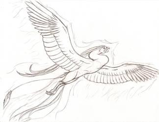 Phoenix1 by crazyemeralddragons