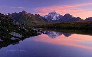 Shrimp's lake... by vincentfavre