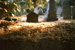 graveyard in chelsea by unevens