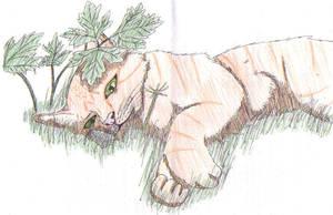 Firestar - Warrior Cats by firefoxessmoon