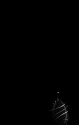 Black Tourmaline Necklace by xZethanyx