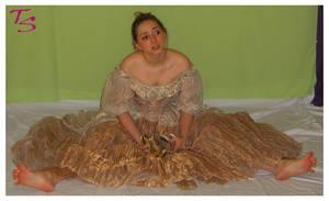 Cinderella Image 3 by tacostock