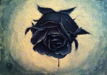 Black Rose (2) by gpr117