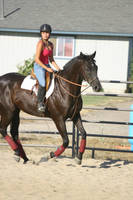 Black Thoroughbred Gelding English Riding by HorseStockPhotos