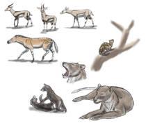Somosaguas fauna sketches I by unlobogris