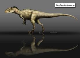 Carcharodontosaurus updated by unlobogris