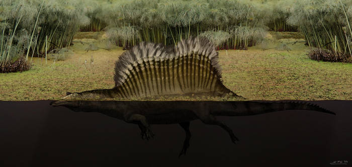 Yet another Spinosaurus... by unlobogris