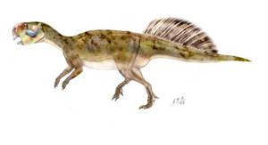 Psittacosaurus mongoliensis by unlobogris