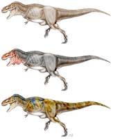 Tyrannosaurus rex by unlobogris
