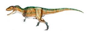 Carcharodontosaurus by unlobogris