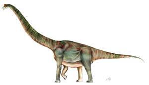 Brachiosaurus altithorax by unlobogris