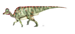 Corythosaurus by unlobogris