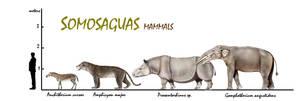 Somosaguas mammals by unlobogris