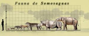 Somosaguas Fauna poster by unlobogris