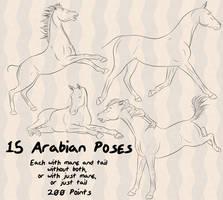 Arabian Horse 15 Poses by lionsilverwolf