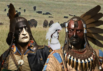 Buffalo brothers  by kongvmax