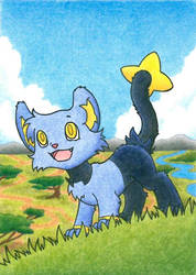 Shinx can't wait to be king by AdotSean