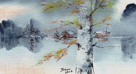 Birch in waterscape by Bragerygg