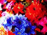 Plastic flowers by laki111