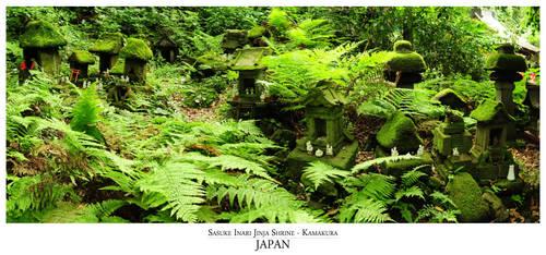 Kamakura - Sasuke Inari Jinja by sotoya