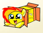 Box Wildfire by pizza-palace
