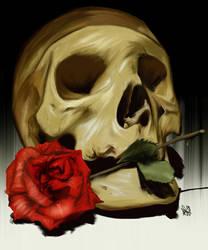 Skull by aibrean