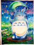 Totoro commission 1 by xxswanfeather