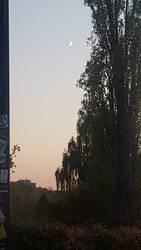 Gesundbrunnen Dusk by tilianus