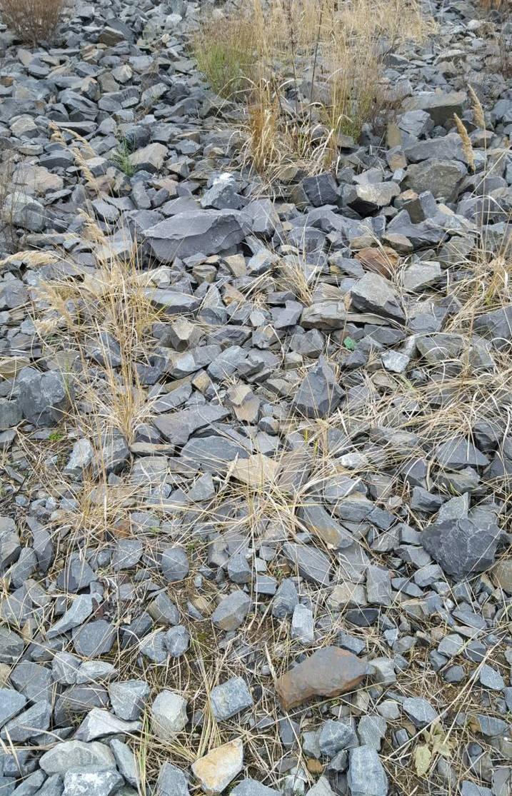Railway Ballast by tilianus