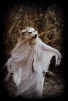 The Howling Ghost II by Qarrezel